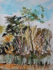 Fairy Lake, Ickworth 23x30cm Watercolour